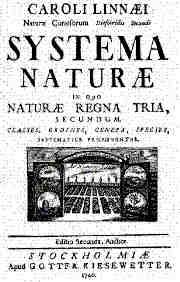 Linné on line – Systema Naturae – an epoch-making book